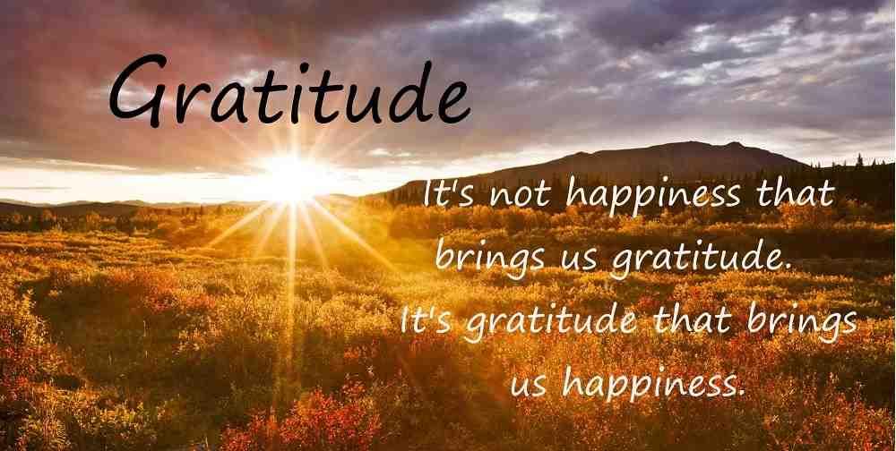 felicidad gratitud 2